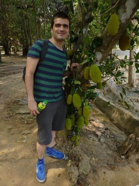 martin-et-petits-jackfruits