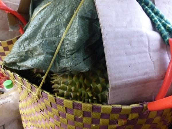 panier-de-durians