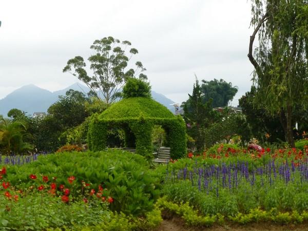 fleurs-et-montagnes-dalat